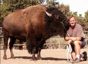 Rosen and Charlie, the buffalo